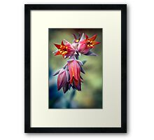 Of all the flowers in the universe, you are the most beautiful to me. So deal with it.  Framed Print