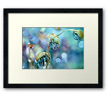 Rainbow Moss Drops Framed Print