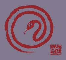Chinese Galligraphic Snake as Symbol of Year 2013 Kids Clothes