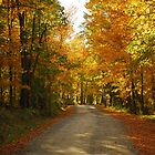Autumn Road in Willimantic Maine by RoyceRocks
