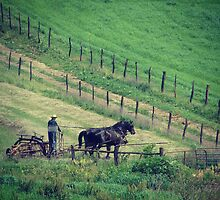 Working Horses in Summer, Haying by angelandspot