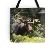 Did I Sneek Up On You? Tote Bag