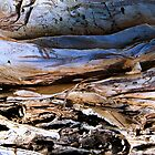 Bark abstract. (Creek running thru rocks.) by ronsphotos