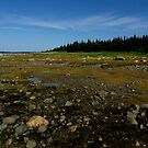 James Bay tidal flats by AndreCosto