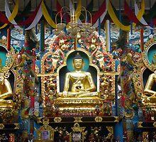 Buddha by Vikki Gage