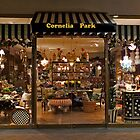 Cornelia Park (view larger) by phil decocco