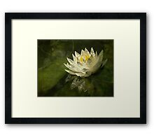 Lily's green world Framed Print