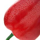 Red pepper by Jenella