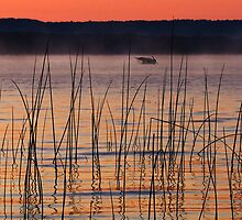Platte Lake Dawn by Kenneth Keifer