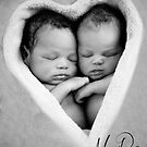The Love of  Twins by ©Marcelle Raphael / Southern Belle Studios