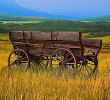 Wagon Ho! by Vickie Emms