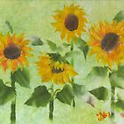 Sunflower 2 by Lily Nakao