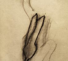 hands by donnamalone
