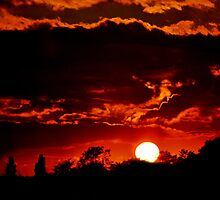 Red Sky at Night  by skid