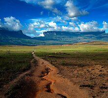 Road to Mount Roraima by adalbertop