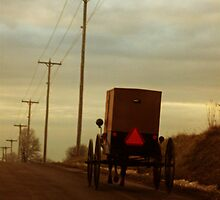 Welcome to Amish Country by Nevermind the Camera Photography