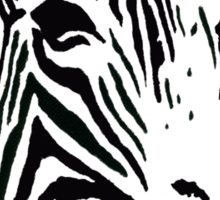 Red Zebra - Pop Art Graphic T-Shirt Sticker