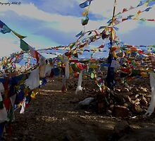 At the Highest Motorable Road in the world by Mudit's Photography