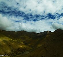 Well painted ny nature by Mudit's Photography