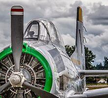 T-28A Trojan  by Bryan Peterson