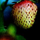 Stawberry by zzsuzsa