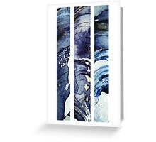 shards of mussel Greeting Card