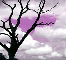 Purple sky tree Abstract by swcphotography