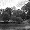 River Taff at Bute Park, Cardiff - BW by Artberry