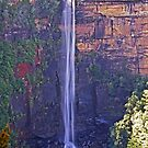Fitzroy Falls - Morton National Park by TonyCrehan