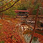 Covered Bridge of Ponca by Lisa G. Putman