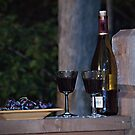 Enjoying the Evening by Sherry Hallemeier