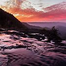 Springbrook Sunset by D Byrne