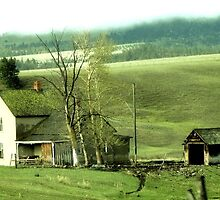 The Old Farmstead by aprilann