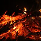 Our Last Fire This Winter by aussiebushstick