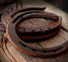 Rusted Horseshoes by Lucinda Walter