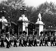 BW UK England London Changing guard Buckingham palace 1970s by blackwhitephoto