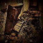 Piano Asylum by Kim Slater