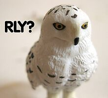 O RLY? by Paola Kathuria