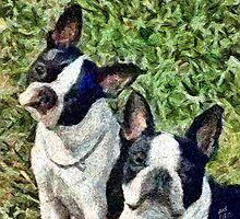 Boston Terrier Duo - Skipper and Dee Dee by doggylips