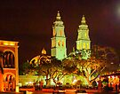 Catedral de Concepcion at Night by Yukondick