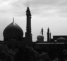BW Iran Qom Mosque of Fatima 1970s by blackwhitephoto