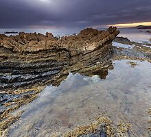 Rocky Cape National Park by Shelley Warbrooke