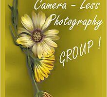 CAMERA - LESS PHOTOGRAPHY MEMBER BANNER by Magaret Meintjes