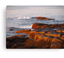 Early Morning Waves and Seaweed Canvas Print