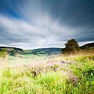 Long Exposure, Tweed Valley from Cardrona Woods, Scottish Borders by Iain MacLean