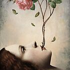 Secret of the Rose by ChristianSchloe