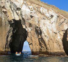 Through the rock. by Anne Scantlebury