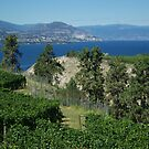 Okanagan Lake by Sheri Bawtinheimer