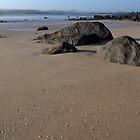 Shells and rocks at Hawley Beach by Morag Anderson