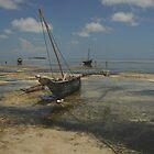 Fishing boat, Zanzibar island by Konstantin Zhuravlev